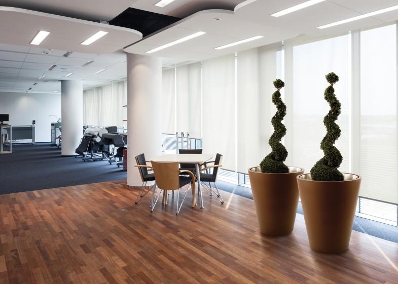 pflanzen am arbeitsplatz greenspired. Black Bedroom Furniture Sets. Home Design Ideas