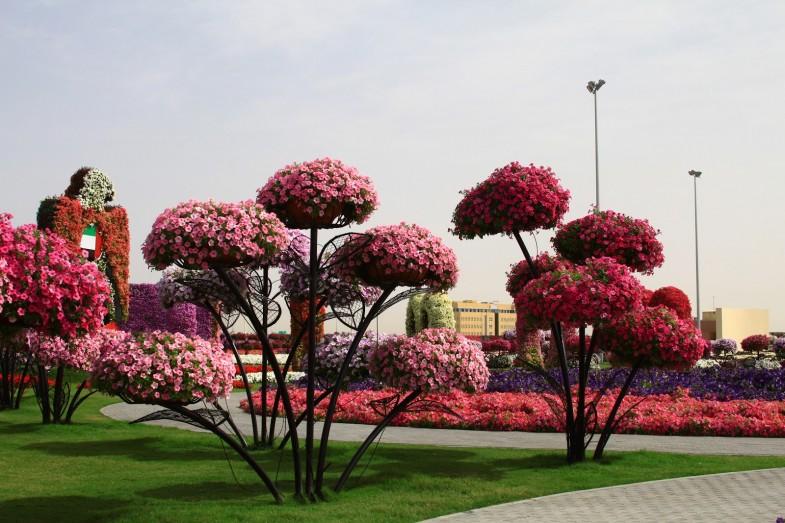 hängende Blumenkästen Sifu