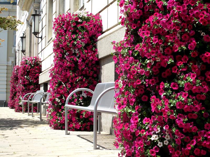 Blumentürme H2400