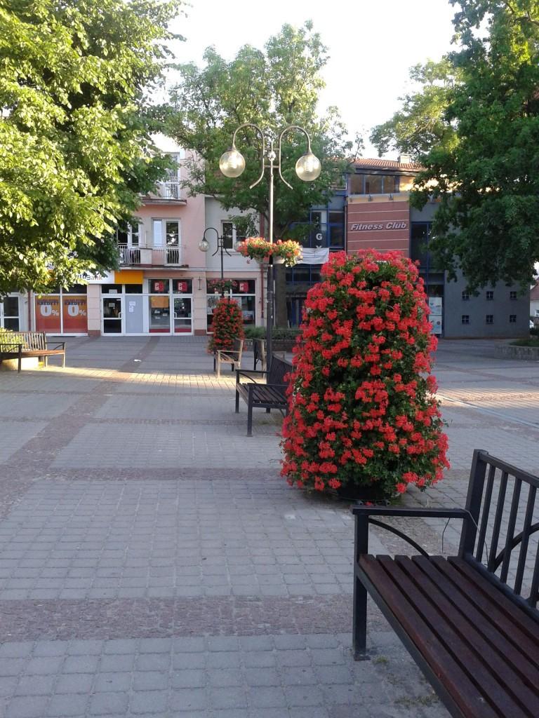 stehende Blumenkaskaden