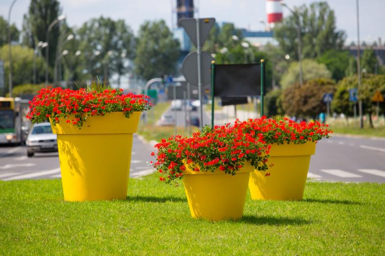 Blumentopf Gianto