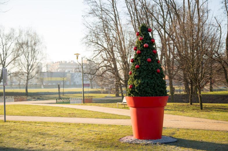 Blumentopf Gianto Weihnachtsdekoration
