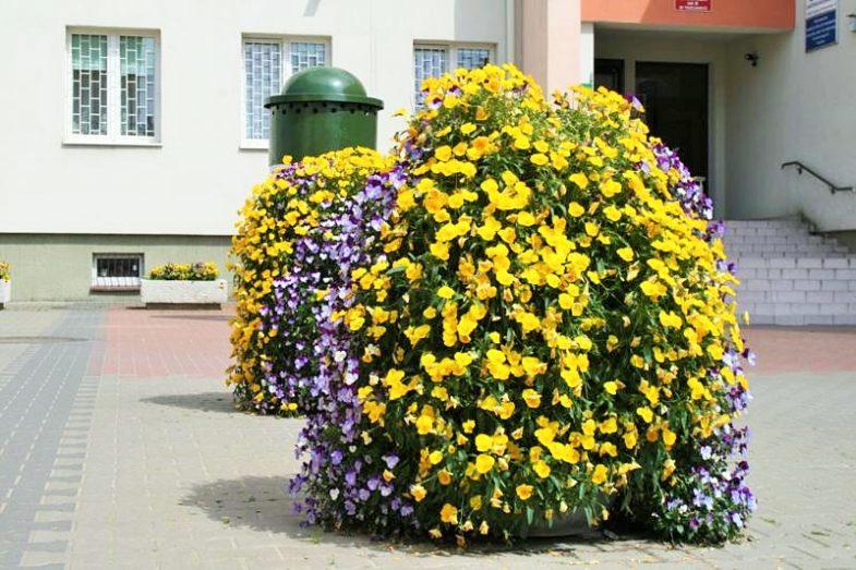 Blumenturm H1200 Terra