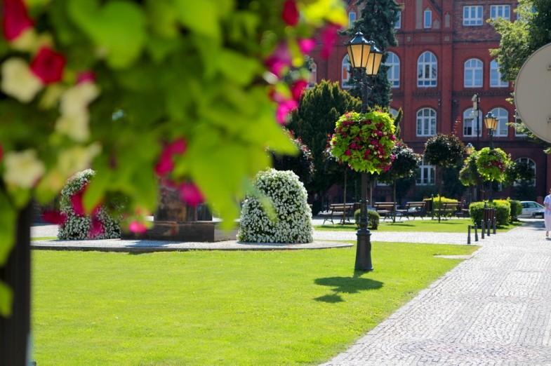 Blumen in der Stadt – Zeit für Vorbereitungen!