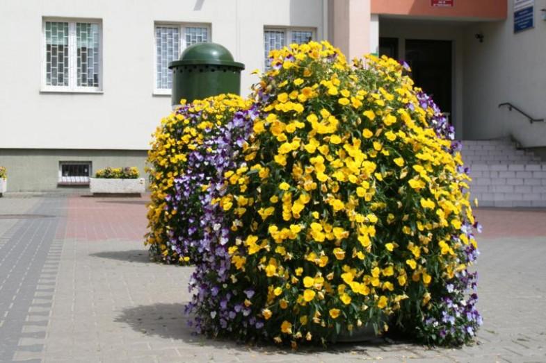 Blumenturm H1100