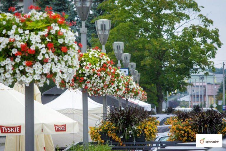 Stadtbepflanzung: hängende Kaskaden oder Blumenampeln Jiflor?