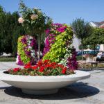 Ein Blumentopf, viele Vorteile