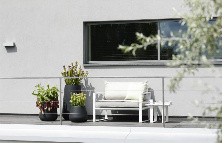 Bäume auf dem Balkon? Das ist möglich!