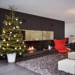 Welcher  Blumentopf ist die beste Wahl für einen Weihnachtsbaum?