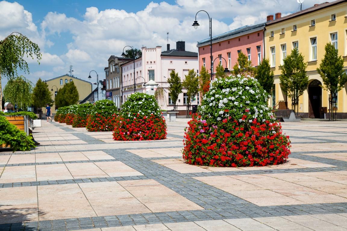 Sommerbepflanzung in Ihrer Stadt: Das sollten Sie beachten!