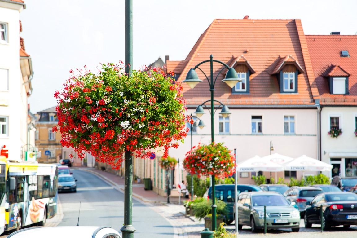 Europa blüht dank der Pflanzendekorationen auf