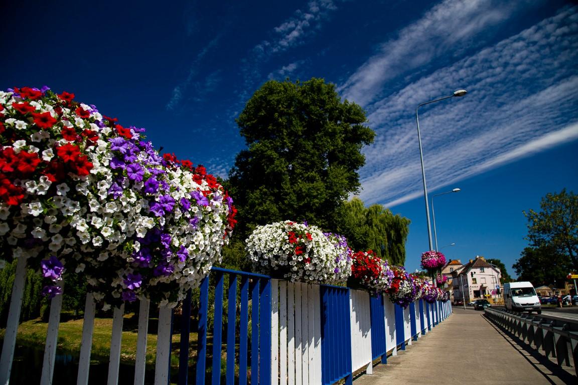 Sommerbepflanzung in der Stadt – die interessantesten Ideen